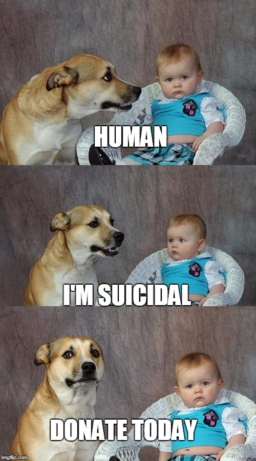 Dad Joke Dog Meme | HUMAN I'M SUICIDAL DONATE TODAY | image tagged in memes,dad joke dog | made w/ Imgflip meme maker