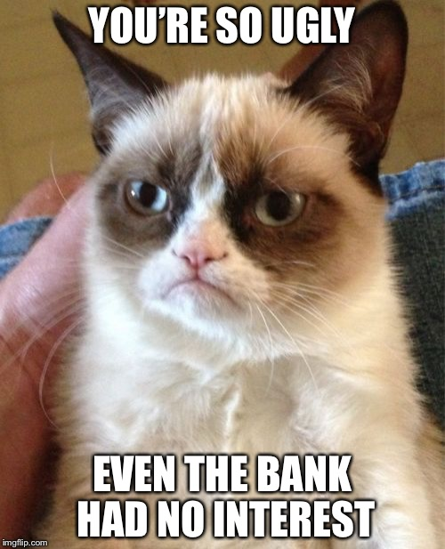 Grumpy Cat Meme | YOU'RE SO UGLY EVEN THE BANK HAD NO INTEREST | image tagged in memes,grumpy cat | made w/ Imgflip meme maker