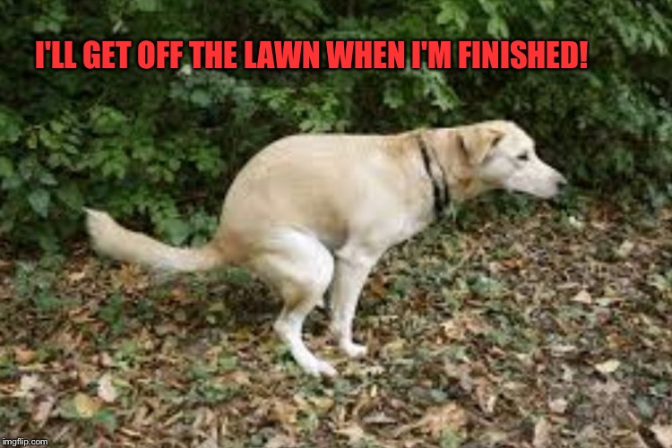 I'LL GET OFF THE LAWN WHEN I'M FINISHED! | made w/ Imgflip meme maker