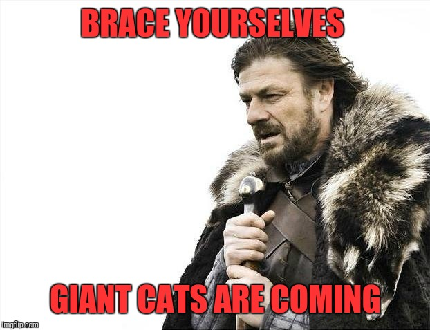 Brace Yourselves X is Coming Meme | BRACE YOURSELVES GIANT CATS ARE COMING | image tagged in memes,brace yourselves x is coming | made w/ Imgflip meme maker