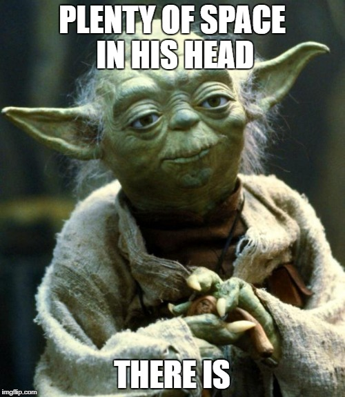 Star Wars Yoda Meme | PLENTY OF SPACE IN HIS HEAD THERE IS | image tagged in memes,star wars yoda | made w/ Imgflip meme maker