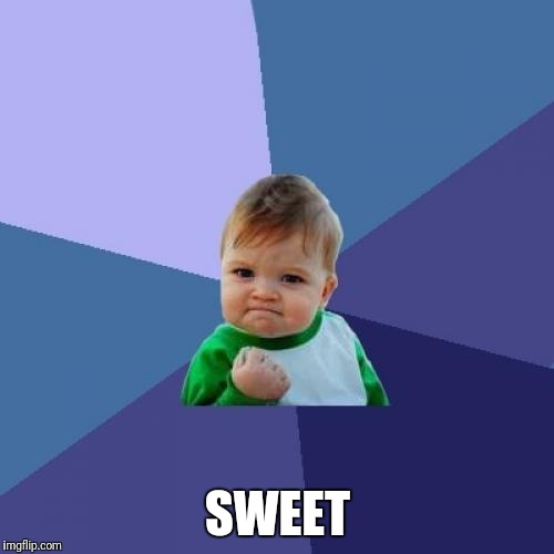 Success Kid Meme | SWEET | image tagged in memes,success kid | made w/ Imgflip meme maker