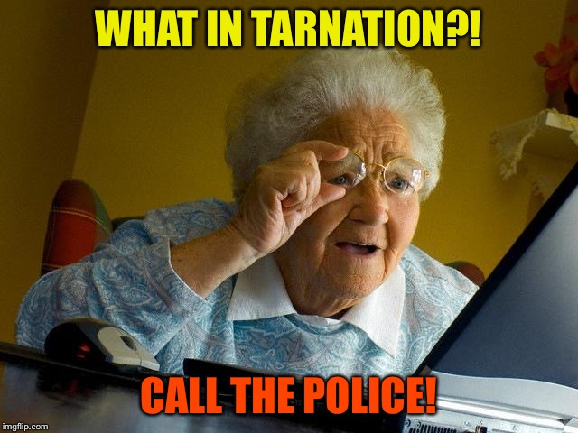 Grandma Finds The Internet Meme | WHAT IN TARNATION?! CALL THE POLICE! | image tagged in memes,grandma finds the internet | made w/ Imgflip meme maker