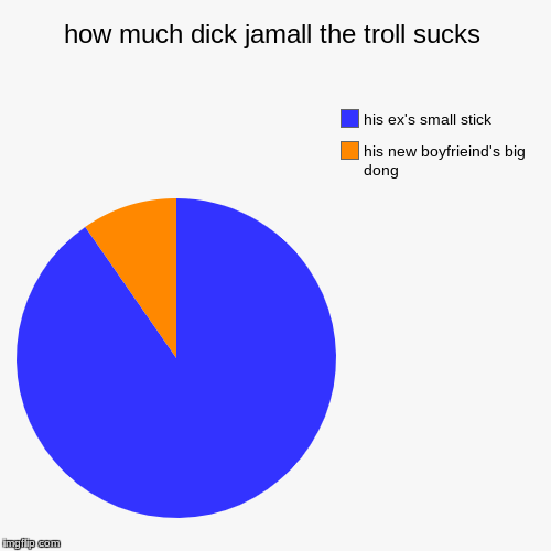 how much dick jamall the troll sucks | his new boyfrieind's big dong, his ex's small stick | image tagged in funny,pie charts | made w/ Imgflip pie chart maker