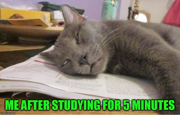 ME AFTER STUDYING FOR 5 MINUTES | made w/ Imgflip meme maker
