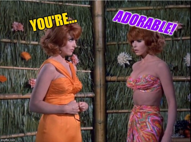 Narci-Ginger, You Complete Me! Gilligan's Island, March 5-12, DrSarcasm Event! |  . | image tagged in gilligans island week,ginger,narcissist,redheads,tv humor | made w/ Imgflip meme maker