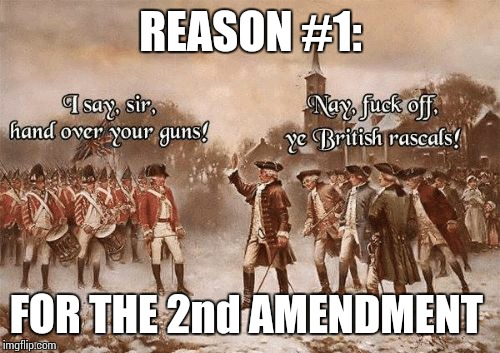#1 & 2nd | REASON #1: FOR THE 2nd AMENDMENT | image tagged in hand over,memes,2nd amendment,rights | made w/ Imgflip meme maker