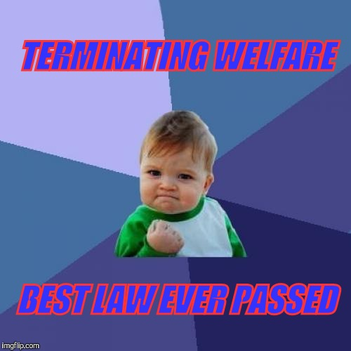 Success Kid Meme | TERMINATING WELFARE BEST LAW EVER PASSED | image tagged in memes,success kid | made w/ Imgflip meme maker