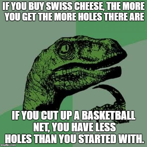 Philosoraptor Meme | IF YOU BUY SWISS CHEESE, THE MORE YOU GET THE MORE HOLES THERE ARE IF YOU CUT UP A BASKETBALL NET, YOU HAVE LESS HOLES THAN YOU STARTED WITH | image tagged in memes,philosoraptor | made w/ Imgflip meme maker