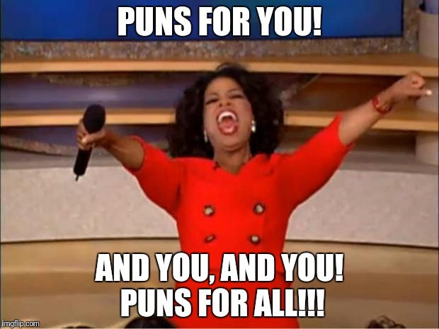 Oprah You Get A Meme | PUNS FOR YOU! AND YOU, AND YOU! PUNS FOR ALL!!! | image tagged in memes,oprah you get a | made w/ Imgflip meme maker