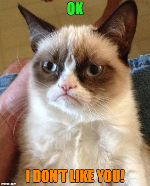 Grumpy Cat Meme | OK I DON'T LIKE YOU! | image tagged in memes,grumpy cat | made w/ Imgflip meme maker