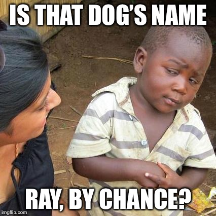 Third World Skeptical Kid Meme | IS THAT DOG'S NAME RAY, BY CHANCE? | image tagged in memes,third world skeptical kid | made w/ Imgflip meme maker