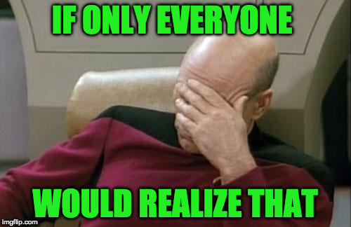 Captain Picard Facepalm Meme | IF ONLY EVERYONE WOULD REALIZE THAT | image tagged in memes,captain picard facepalm | made w/ Imgflip meme maker