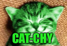 happy RayCat | CAT-CHY | image tagged in happy raycat | made w/ Imgflip meme maker