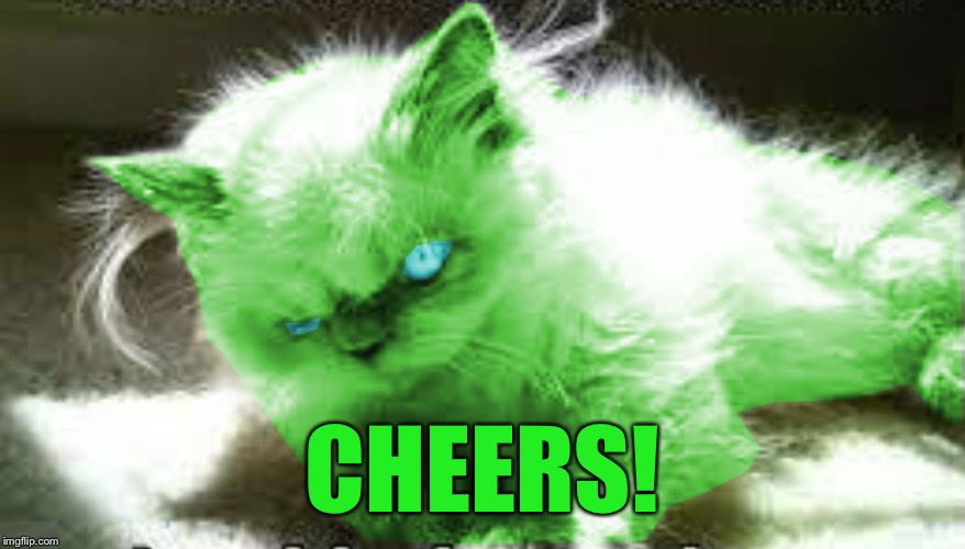 mad raycat | CHEERS! | image tagged in mad raycat | made w/ Imgflip meme maker