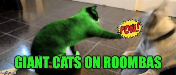 RayCat Roomba | GIANT CATS ON ROOMBAS | image tagged in raycat roomba | made w/ Imgflip meme maker