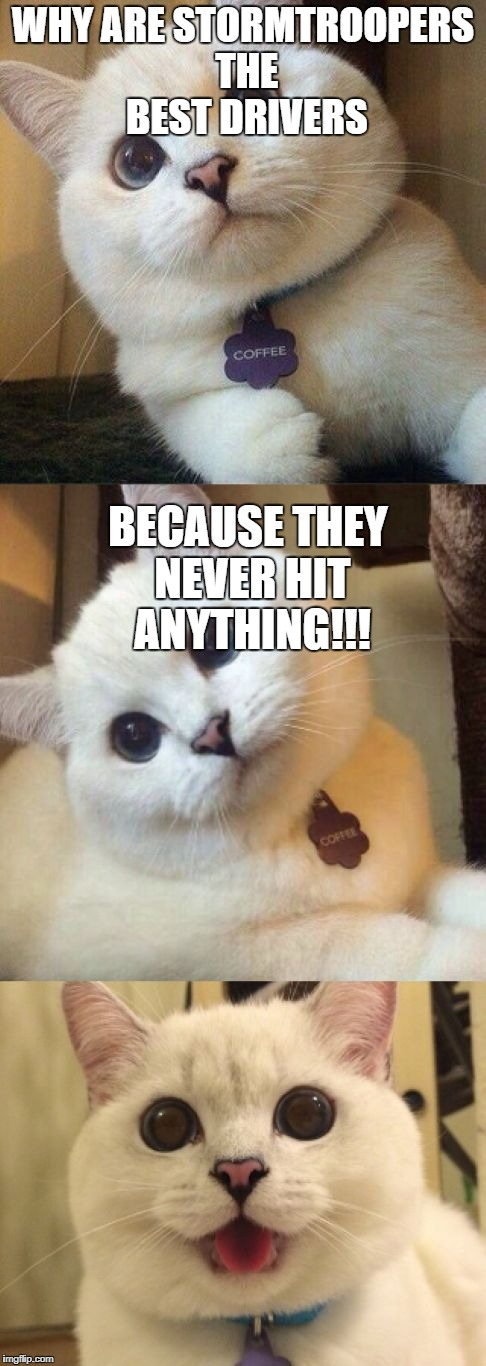 bad pun cat  | WHY ARE STORMTROOPERS THE BEST DRIVERS BECAUSE THEY NEVER HIT ANYTHING!!! | image tagged in bad pun cat | made w/ Imgflip meme maker