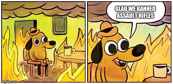 This is Fine (Blank) | GLAD WE BANNED ASSAULT RIFLES | image tagged in memes,liberals,funny,america,guns | made w/ Imgflip meme maker