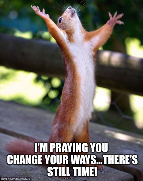 Oh Lord!  | I'M PRAYING YOU CHANGE YOUR WAYS...THERE'S STILL TIME! | image tagged in praying squirrel,holy,holocaust,apocalypse,end of the world | made w/ Imgflip meme maker