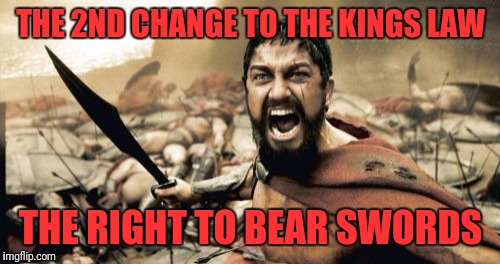 Sparta Leonidas Meme | THE 2ND CHANGE TO THE KINGS LAW THE RIGHT TO BEAR SWORDS | image tagged in memes,sparta leonidas | made w/ Imgflip meme maker
