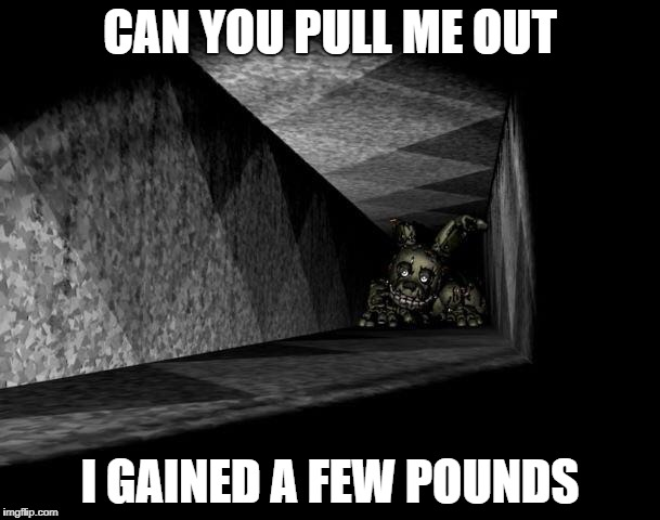 FnAF 3 | CAN YOU PULL ME OUT I GAINED A FEW POUNDS | image tagged in fnaf 3 | made w/ Imgflip meme maker