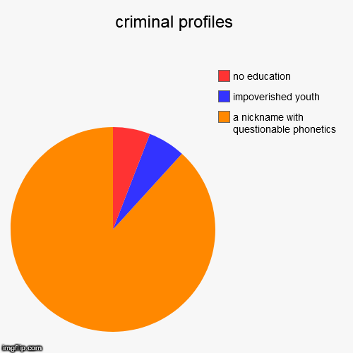 criminal profiles | a nickname with questionable phonetics, impoverished youth, no education | image tagged in funny,pie charts | made w/ Imgflip pie chart maker