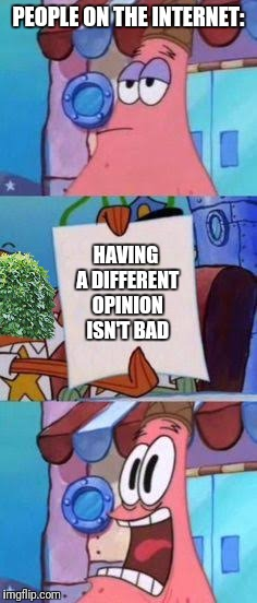 Enlightened | PEOPLE ON THE INTERNET: HAVING A DIFFERENT OPINION ISN'T BAD | image tagged in scared patrick,memes,bush,snowflakes | made w/ Imgflip meme maker
