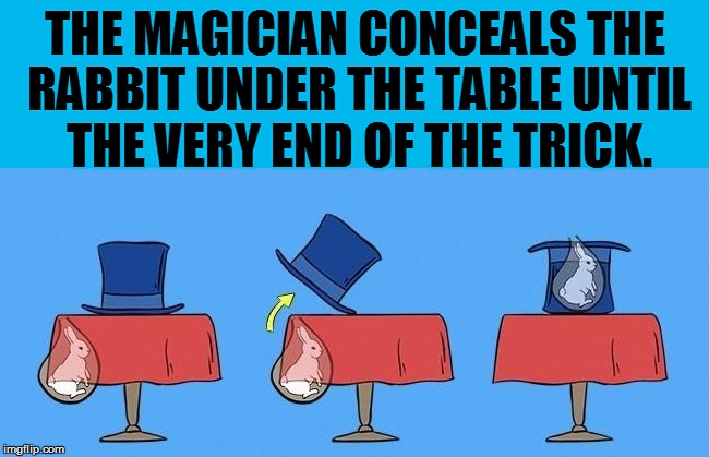THE MAGICIAN CONCEALS THE RABBIT UNDER THE TABLE UNTIL THE VERY END OF THE TRICK. | made w/ Imgflip meme maker