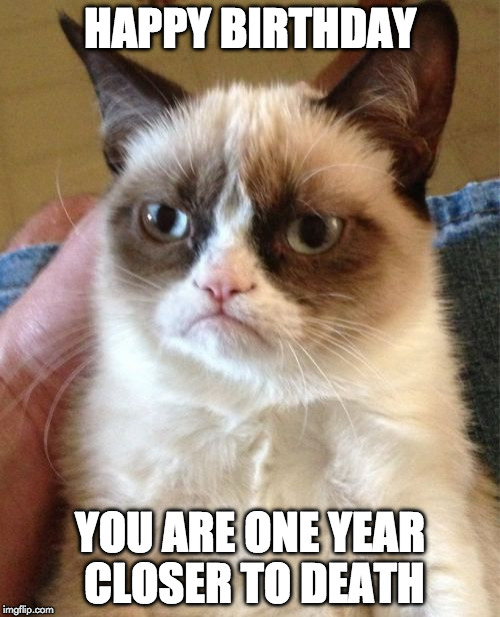 Grumpy Cat Meme | HAPPY BIRTHDAY YOU ARE ONE YEAR CLOSER TO DEATH | image tagged in memes,grumpy cat | made w/ Imgflip meme maker