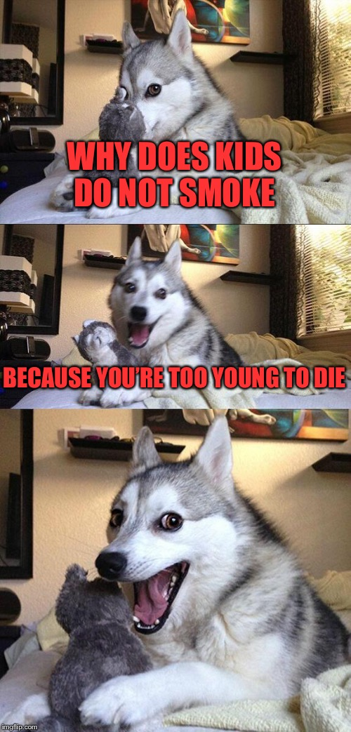 Bad Pun Dog Meme | WHY DOES KIDS DO NOT SMOKE BECAUSE YOU'RE TOO YOUNG TO DIE | image tagged in memes,bad pun dog | made w/ Imgflip meme maker
