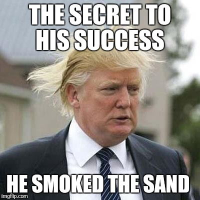 Sand Success man | THE SECRET TO HIS SUCCESS HE SMOKED THE SAND | image tagged in donald trump | made w/ Imgflip meme maker