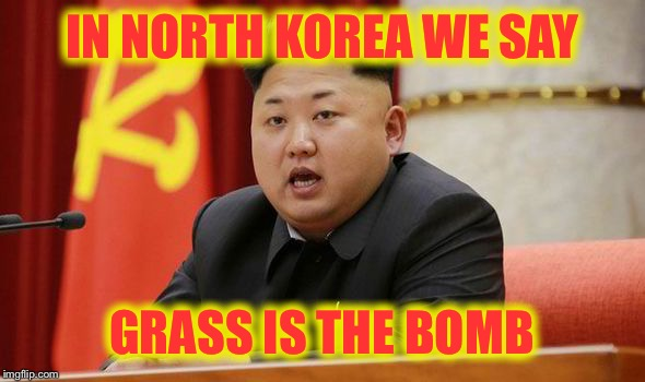 Kim Jong Un | IN NORTH KOREA WE SAY GRASS IS THE BOMB | image tagged in kim jong un | made w/ Imgflip meme maker