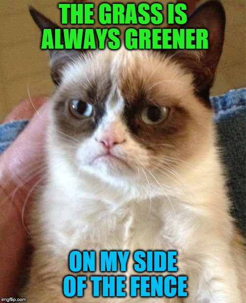 Grumpy Cat Meme | THE GRASS IS ALWAYS GREENER ON MY SIDE OF THE FENCE | image tagged in memes,grumpy cat | made w/ Imgflip meme maker