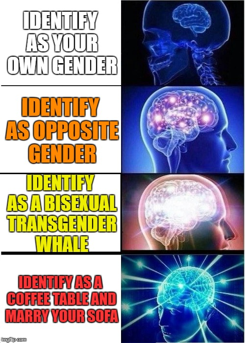 Roll with the flow, I suppose... | IDENTIFY AS YOUR OWN GENDER IDENTIFY AS OPPOSITE GENDER IDENTIFY AS A BISEXUAL TRANSGENDER WHALE IDENTIFY AS A COFFEE TABLE AND MARRY YOUR S | image tagged in memes,expanding brain | made w/ Imgflip meme maker