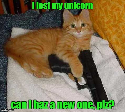 I lost my unicorn can I haz a new one, plz? | made w/ Imgflip meme maker