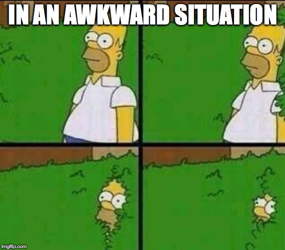Homer Simpson in Bush - Large | IN AN AWKWARD SITUATION | image tagged in homer simpson in bush - large | made w/ Imgflip meme maker