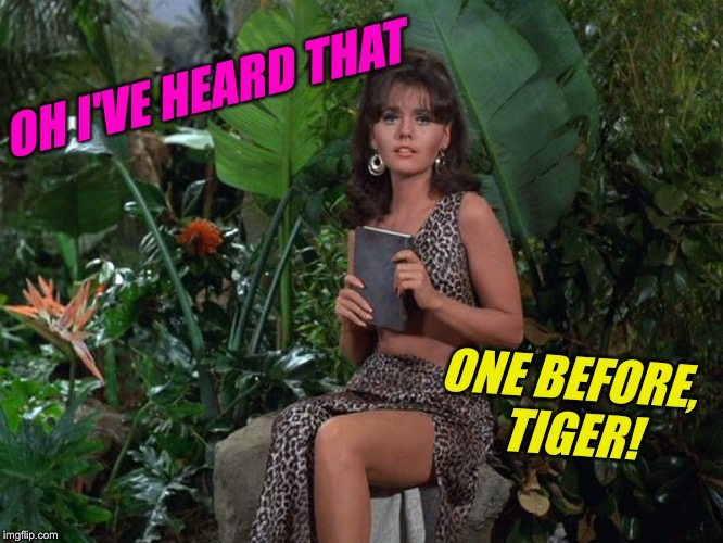 OH I'VE HEARD THAT ONE BEFORE, TIGER! | made w/ Imgflip meme maker
