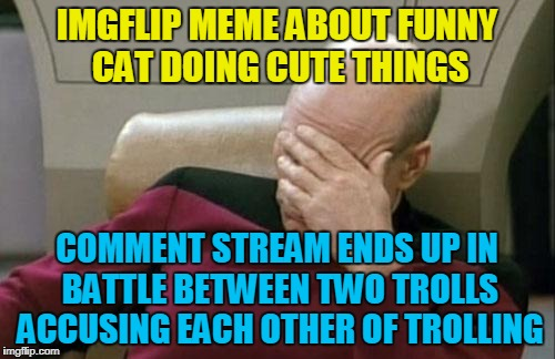 Captain Picard Facepalm Meme | IMGFLIP MEME ABOUT FUNNY CAT DOING CUTE THINGS COMMENT STREAM ENDS UP IN BATTLE BETWEEN TWO TROLLS ACCUSING EACH OTHER OF TROLLING | image tagged in memes,captain picard facepalm | made w/ Imgflip meme maker