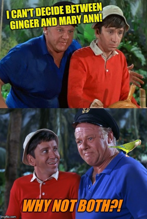 Why Not Indeed? Gilligan's Island Week March 5-12 A DrSarcasm Event! | image tagged in gilligans island week,why not both,skipper,ginger,tv humor | made w/ Imgflip meme maker