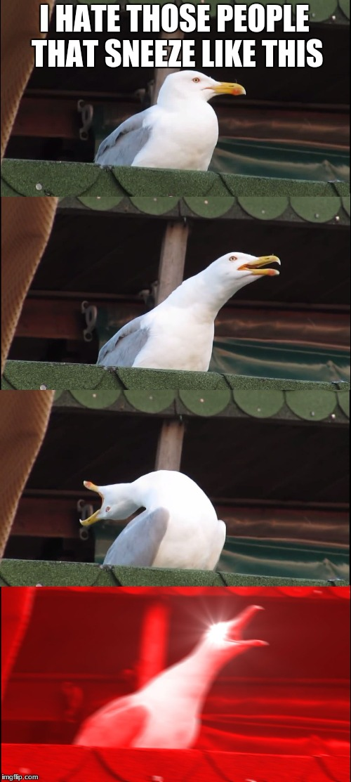 Inhaling Seagull Meme | I HATE THOSE PEOPLE THAT SNEEZE LIKE THIS | image tagged in memes,inhaling seagull | made w/ Imgflip meme maker
