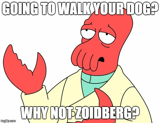 Futurama Zoidberg Meme | GOING TO WALK YOUR DOG? WHY NOT ZOIDBERG? | image tagged in memes,futurama zoidberg | made w/ Imgflip meme maker