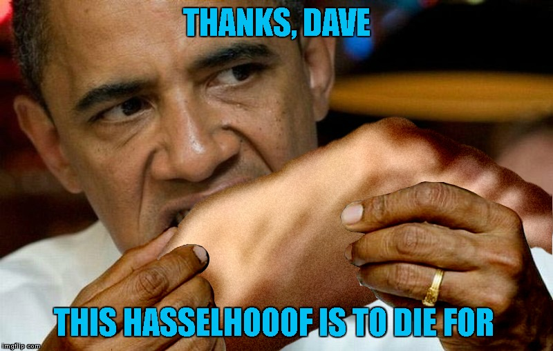 THANKS, DAVE THIS HASSELHOOOF IS TO DIE FOR | made w/ Imgflip meme maker