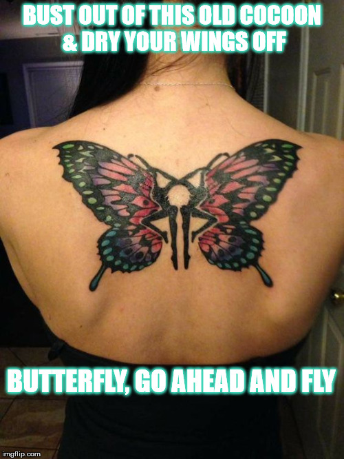 DMB Butterfly | BUST OUT OF THIS OLD COCOON & DRY YOUR WINGS OFF BUTTERFLY, GO AHEAD AND FLY | image tagged in dmb,dave matthews band,butterfly,firedancer,fly | made w/ Imgflip meme maker