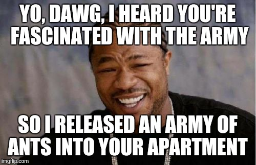 Yo Dawg Heard You Meme | YO, DAWG, I HEARD YOU'RE FASCINATED WITH THE ARMY SO I RELEASED AN ARMY OF ANTS INTO YOUR APARTMENT | image tagged in memes,yo dawg heard you | made w/ Imgflip meme maker