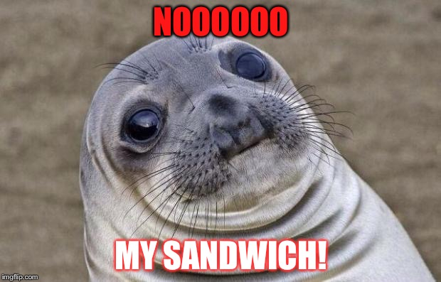 Awkward Moment Sealion |  NOOOOOO; MY SANDWICH! | image tagged in memes,awkward moment sealion | made w/ Imgflip meme maker
