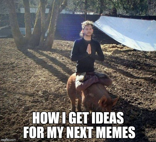 Om | HOW I GET IDEAS FOR MY NEXT MEMES | image tagged in meditation,meditate,keep calm,meme,funny memes,pig | made w/ Imgflip meme maker