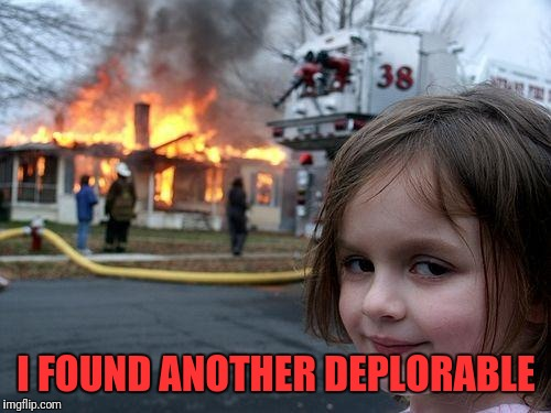 Disaster Girl Meme | I FOUND ANOTHER DEPLORABLE | image tagged in memes,disaster girl | made w/ Imgflip meme maker