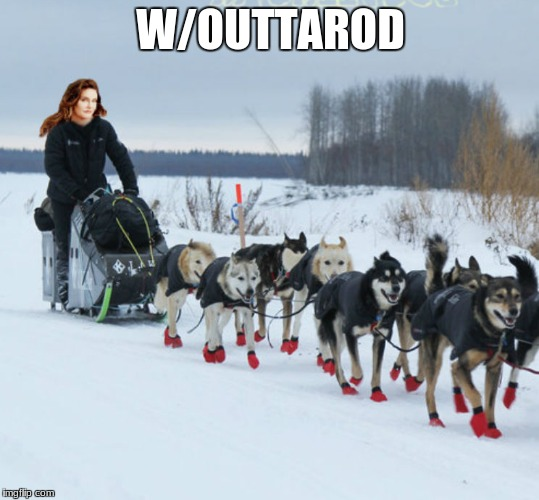 Confuses the dogs... | W/OUTTAROD | image tagged in iditarod,snow,race,brucaitlyn jenner | made w/ Imgflip meme maker