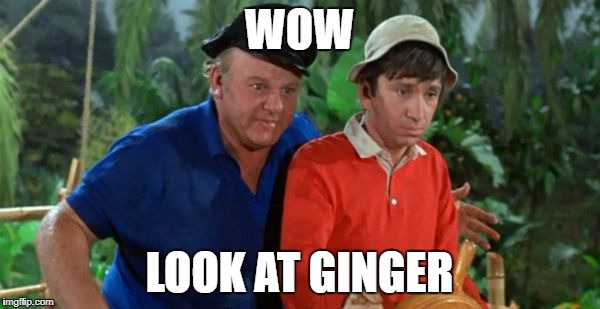 gilligan | WOW LOOK AT GINGER | image tagged in gilligan | made w/ Imgflip meme maker
