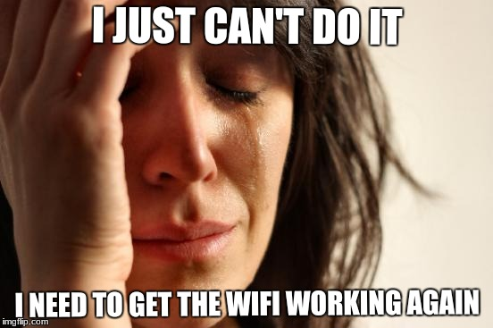 First World Problems Meme | I JUST CAN'T DO IT I NEED TO GET THE WIFI WORKING AGAIN | image tagged in memes,first world problems | made w/ Imgflip meme maker